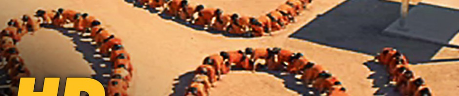 THE HUMAN CENTIPEDE 3 Trailer